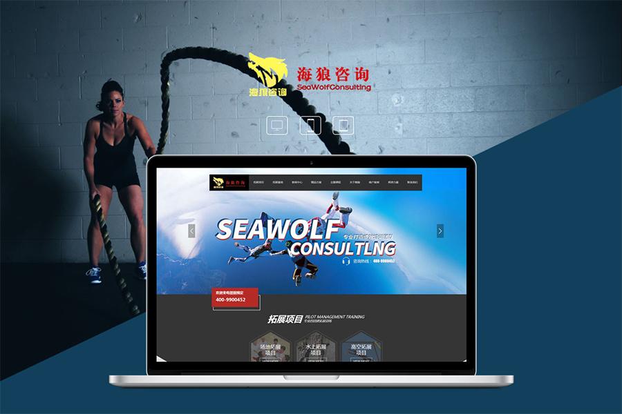 专注郑州网站建设公司营销型网站具备的特点和优势