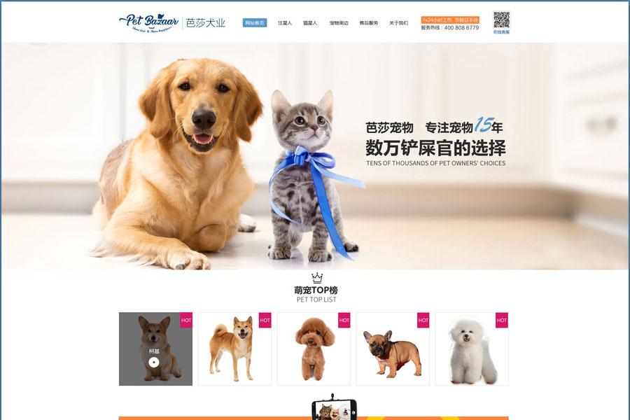 围绕郑州网站开发公司建站的八个步骤